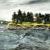 2017, Amanda Penrose Hart : Shark Island