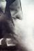 1991, Rameshwar Broota : Vanishing figure